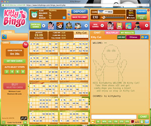 Kitty Bingo/